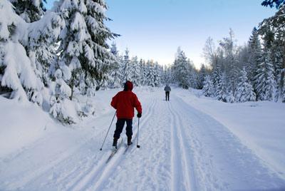 Skitur i skiløypene